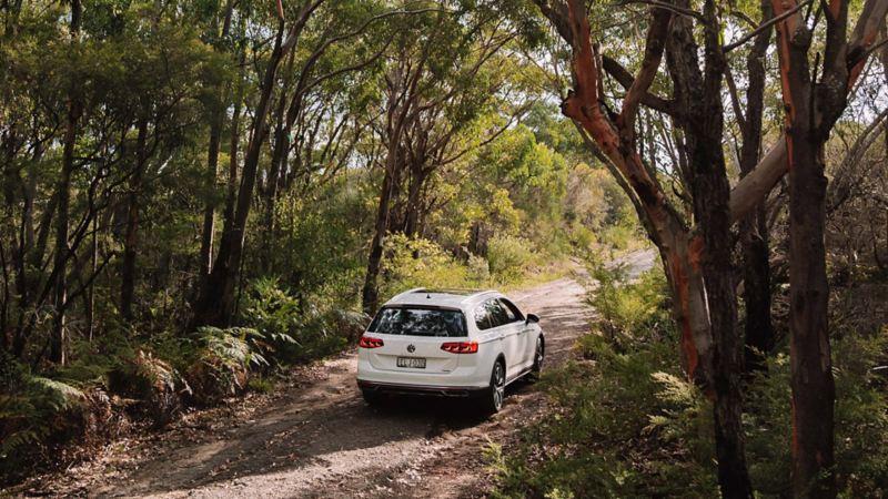 Rear of Volkswagen Passat Alltrack driving on dirt road.
