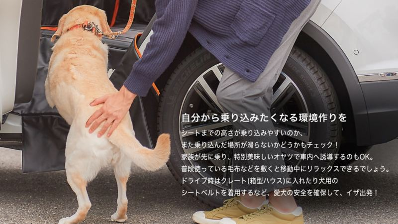 ペットと出かけよう。|車の中でのポイント|自分から乗り込みたくなる環境作りを