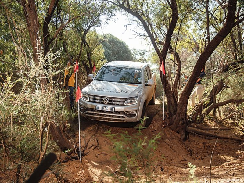 銀色Amarok 往下行駛在樹根盤結的泥土地上,兩側插滿旗子規範比賽車的行徑路線