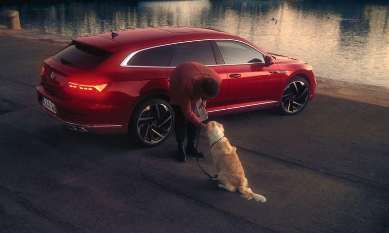 Arteon Shooting brake vue de l'arrière, un homme se penche vers son chien
