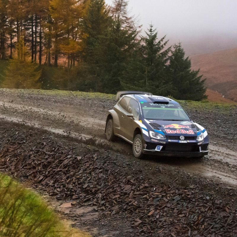 Autos de Carreras Volkswagen - Conoce los modelos y sus características