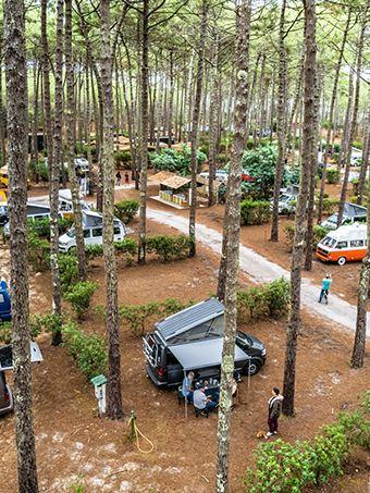 Les emplacements sur le VW California festival dans la forêt