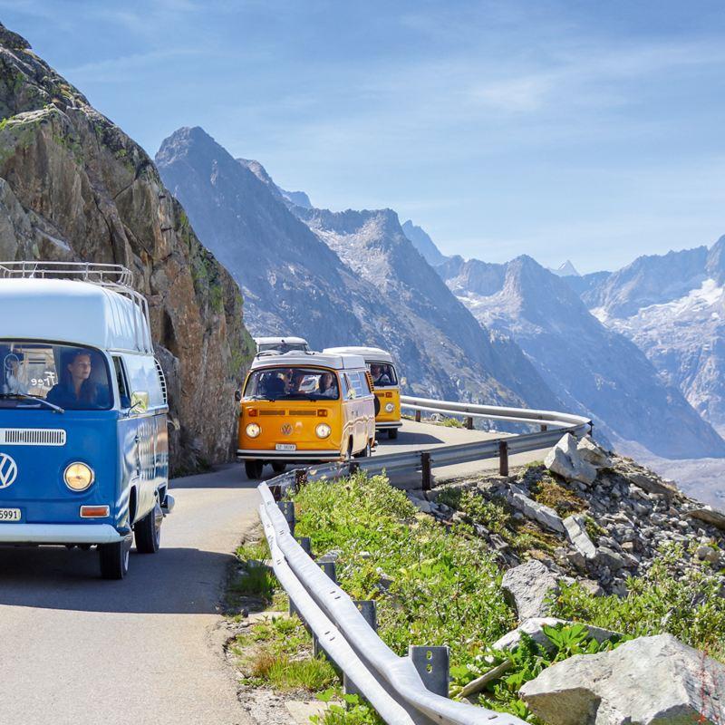 Drei Bullis fahren hintereinander auf einer Bergstrasse