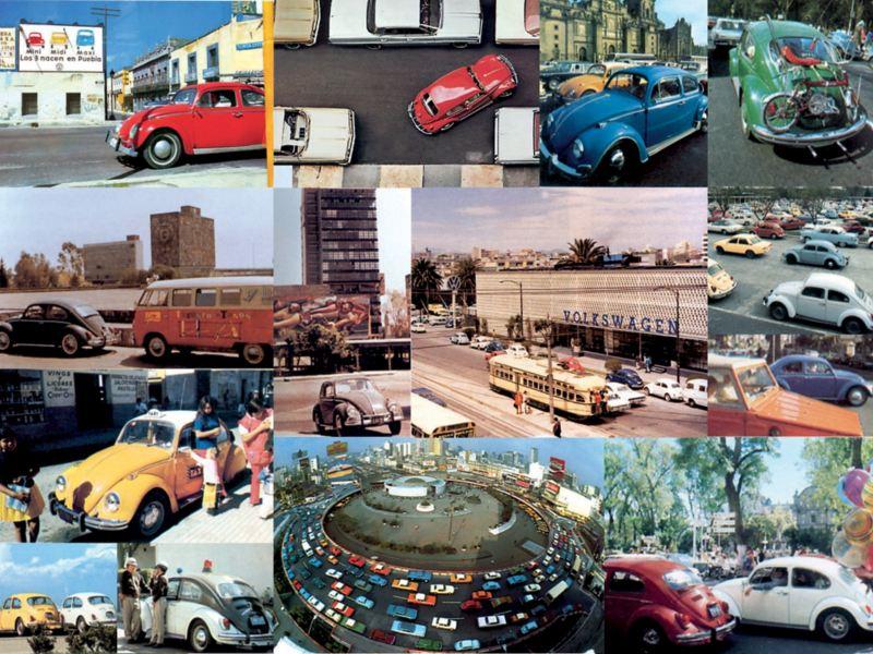 Collage con diferentes fotografías de Volkswagen Type1