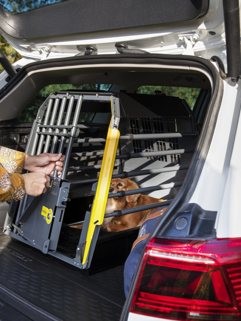 Linda Schilén stänger Esters bur från Volkswagen