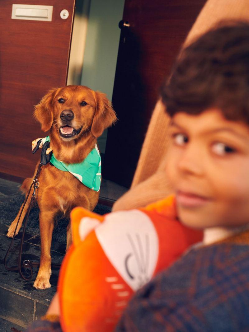 Un enfant sourit à l'appareil photo, un chien est assis à l'arrière-plan