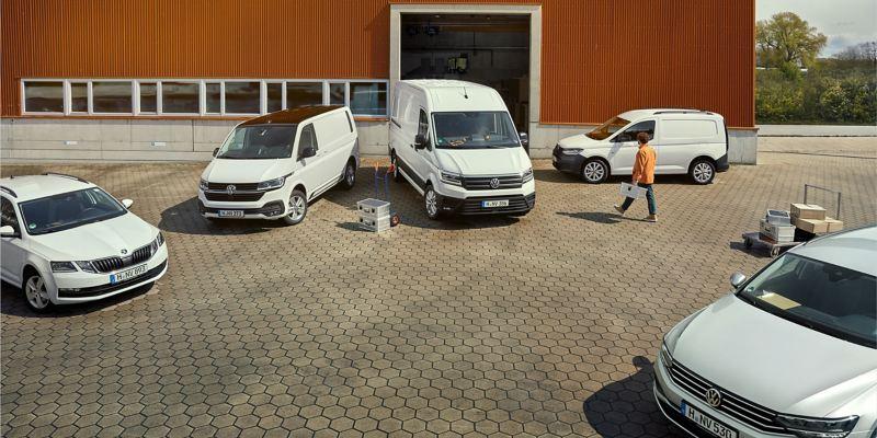 Eine Flotte von VW Modellen.