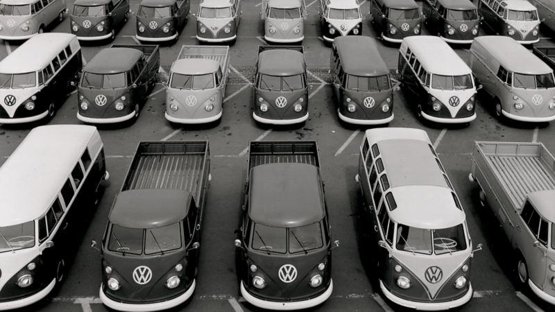 Un parcheggio all'aperto pieno di Volkswagen Bulli con vari allestimenti.