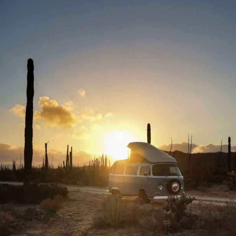 Combi VW dans le désert