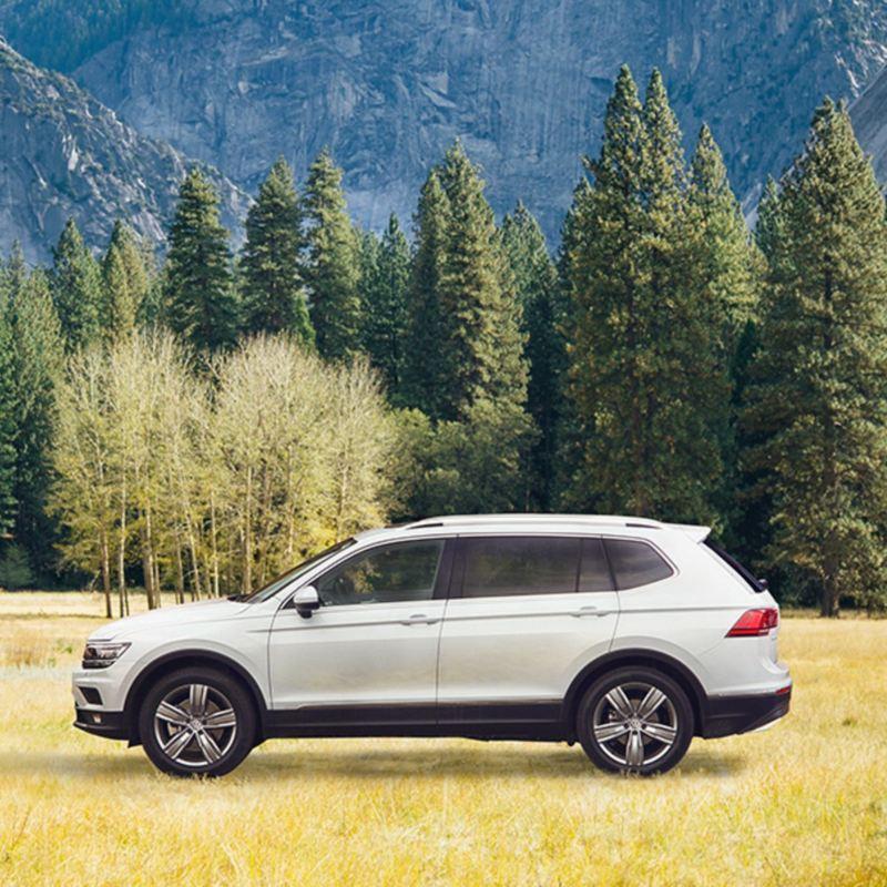 MSR - Sistema de seguridad en autos Volkswagen para asistir el frenado en la conducción