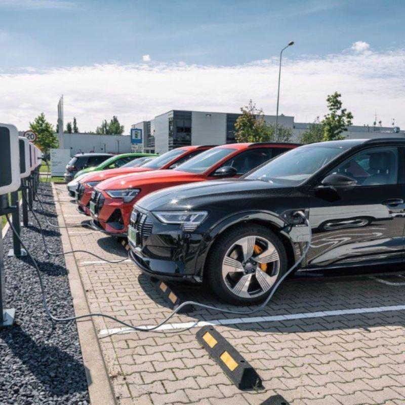 Kadra zarządzająca Volkswagen Group Polska przesiada się na samochody elektryczne i hybrydowe typu plug-in