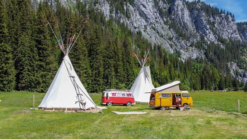 Zwei historische VW Busse stehen vor einem Tipi in der Natur.