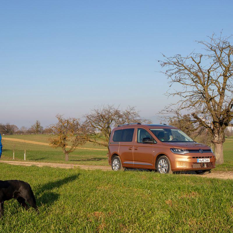 Frau mit Hund steht im Feld vor dem neuen Caddy