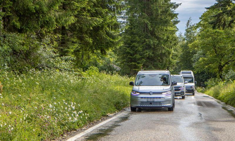 Caddy California, Grand California e California 6.1 guidano uno dietro l'altro su una strada forestale.