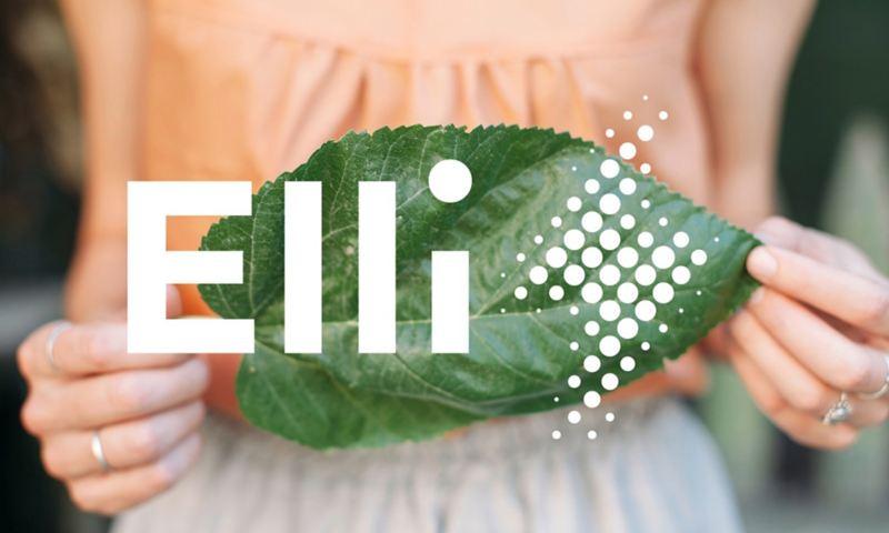 Una donna regge una foglia e in sovraimpressione si vede il logo di Elli Naturstrom