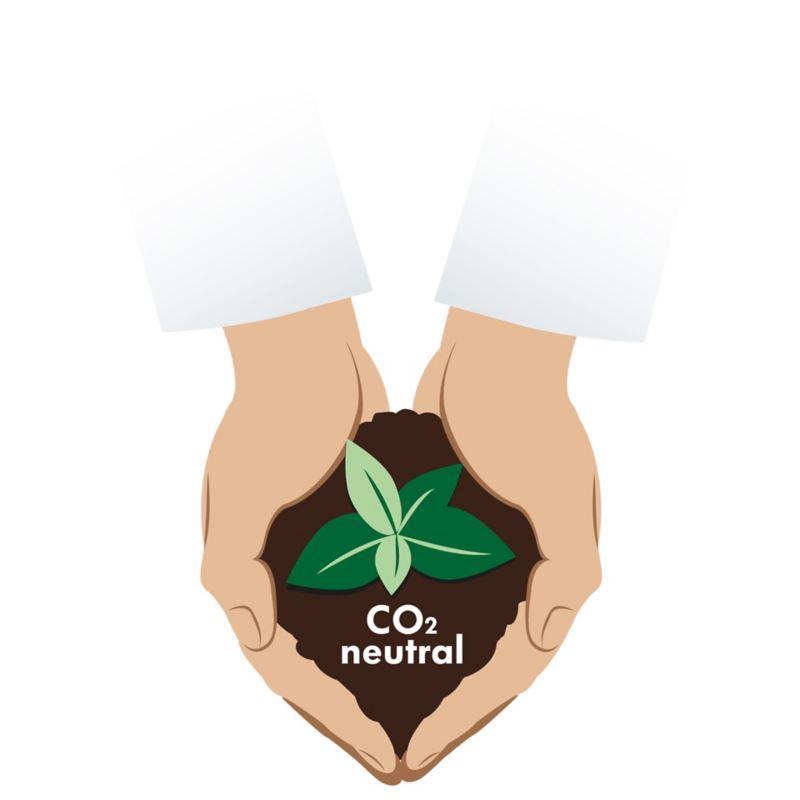 Co2-karbonnøytralitet