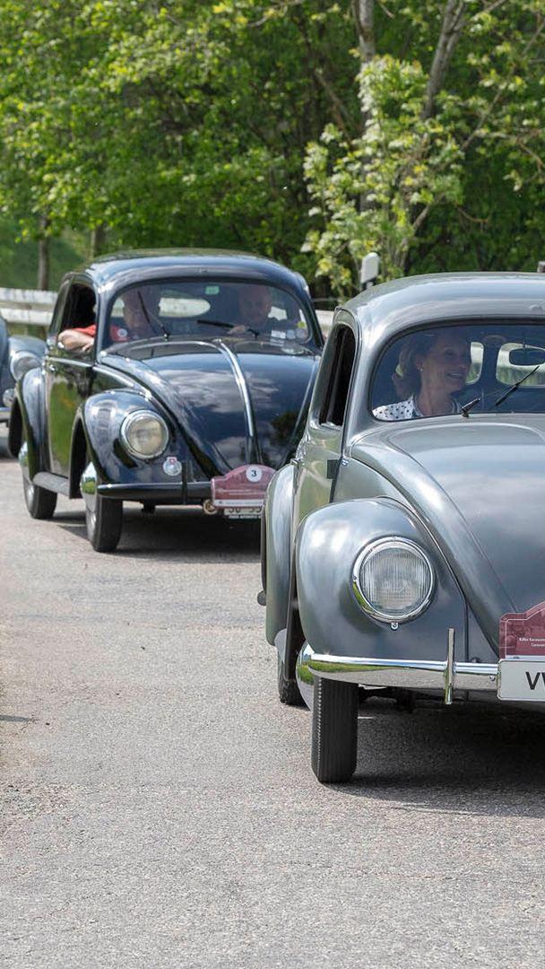 3 Käfer fahren auf der Strasse