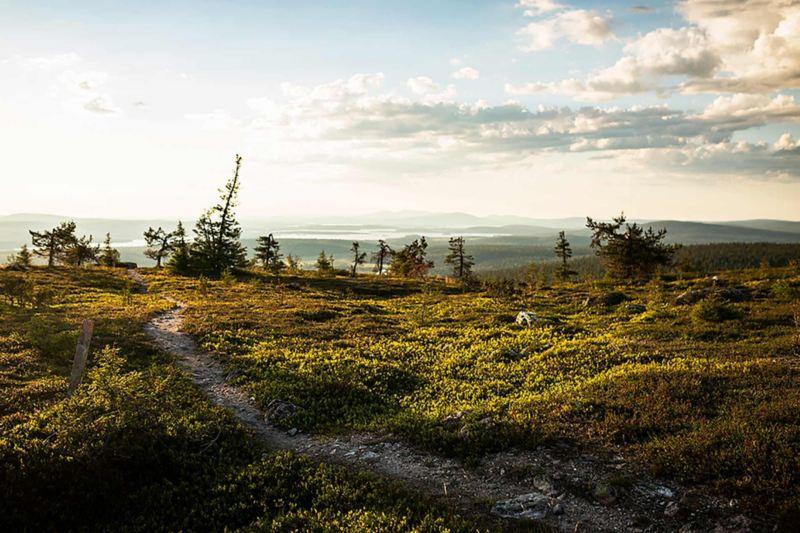 Finska Lappland. Foto: Guillem Casanova