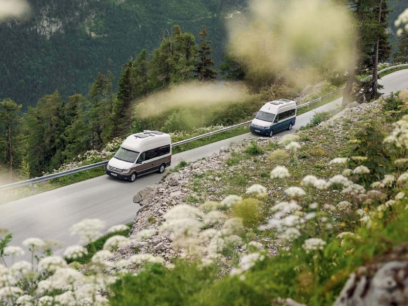 Two VW Grand California in convoy on mountain road with wild flowers landscape