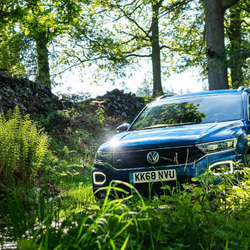 T-Roc in a woodland