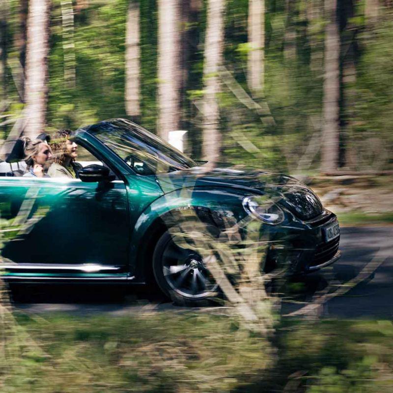 Due ragazze viaggiano a bordo di una cabriolet Volkswagen su una strada in un bosco.