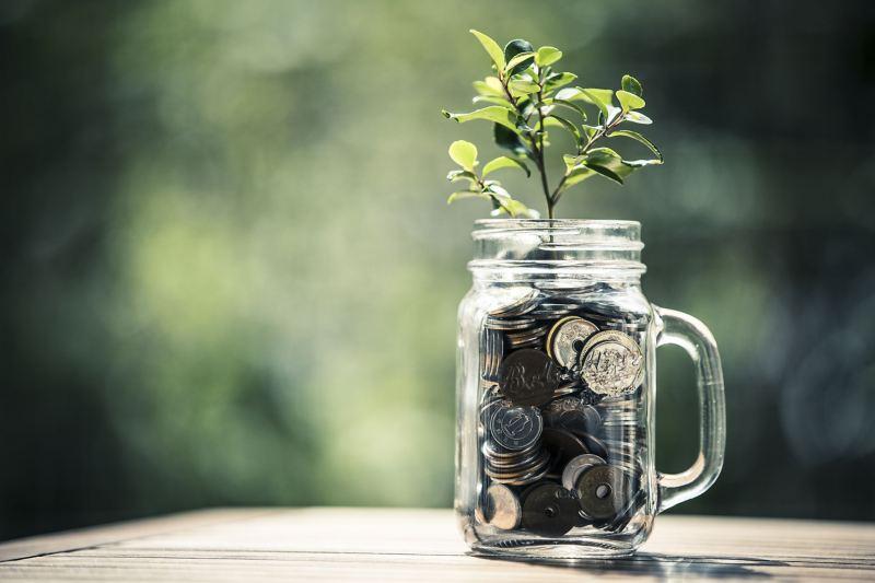 Eine Pflanze wächst aus einem mit Münzen gefüllten Glas: Die Förderung von E-Autos ist ein Beitrag zum Umweltschutz.