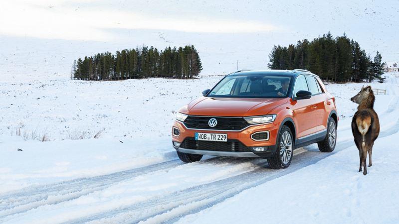 Volkswagen Tiguan naranja en una carretera nevada junto a un reno