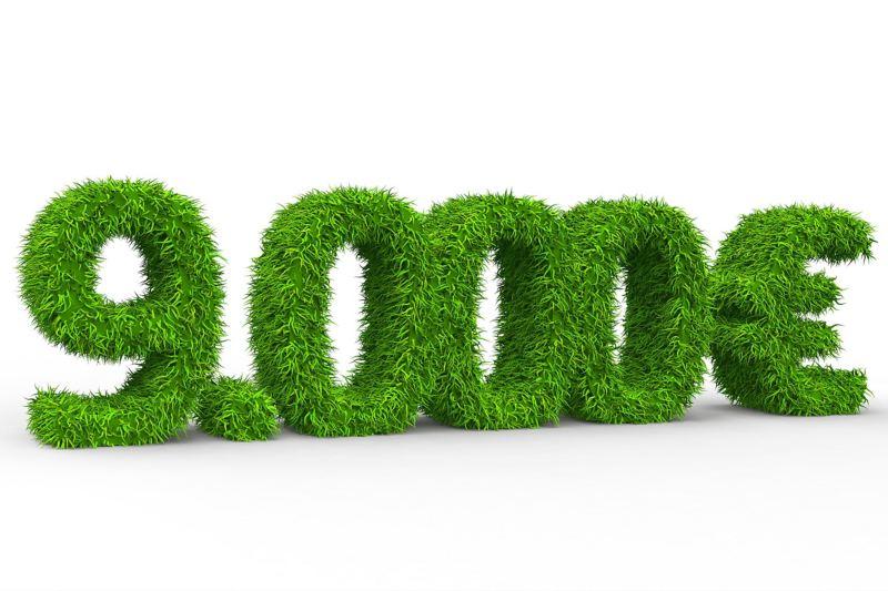 9000 Euro als Schrift ausgeschnitten aus grünem Rasen