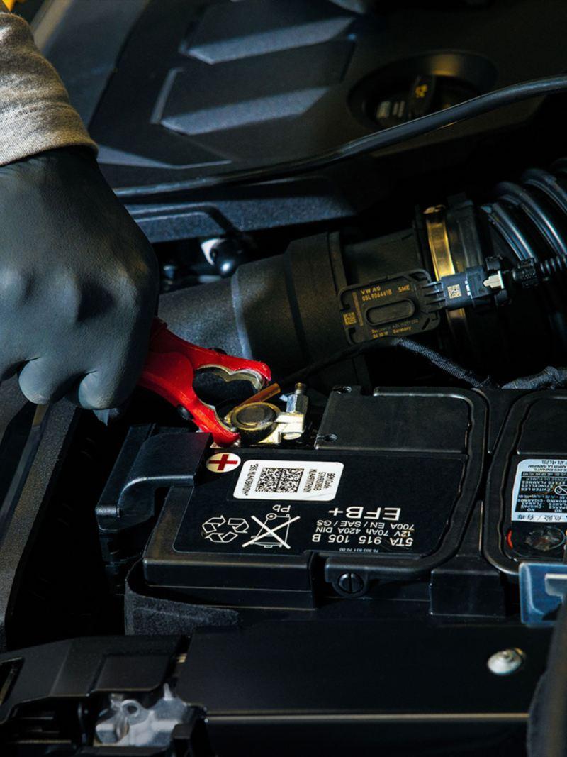 Aprende cómo cargar la batería de tu auto
