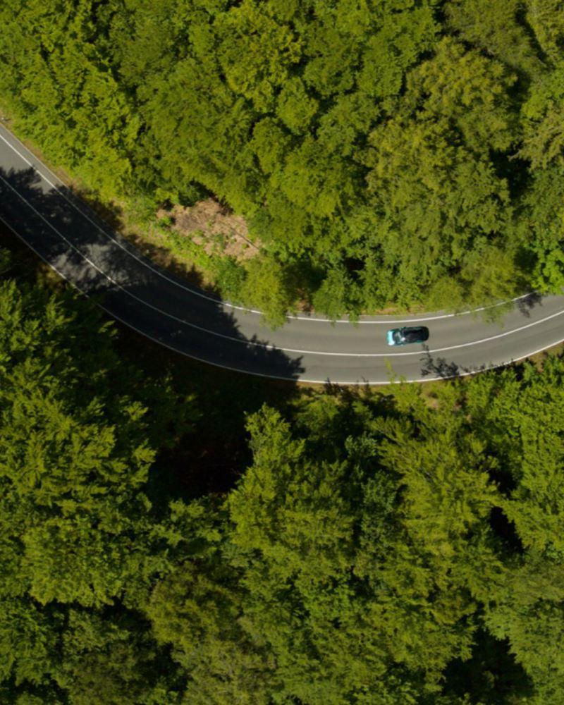 Vista aérea de um carro a andar numa estrada que atravessa uma floresta.