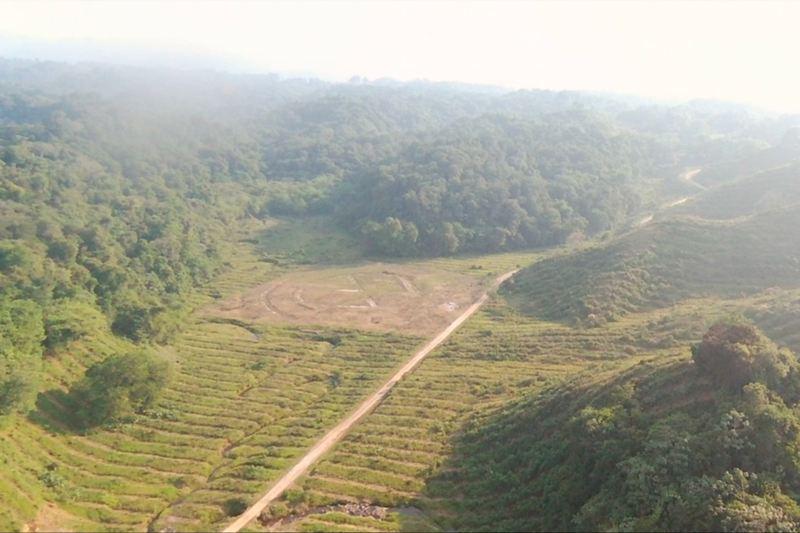 """Zona """"Las Margaritas"""" preservada con sistema de producción, cultivo y transformación de bambú para desarrollo económico"""