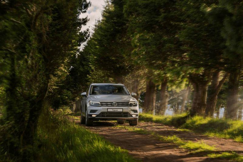 VW - Tiguan SUV 4x4 en carretera de tierra