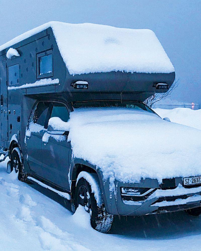 Amarok steht im Schnee
